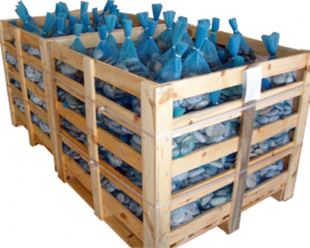 10 KGS PP NETS IN WOODEN CRATE